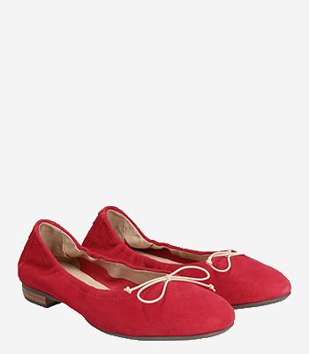 Donna Carolina Ballerina 39.170.170 -011