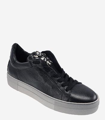 Donna Carolina Sneaker 34.168.124