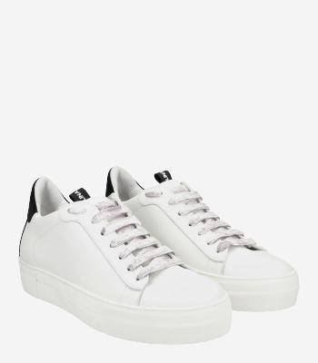 Donna Carolina Sneaker 43.168.111-003